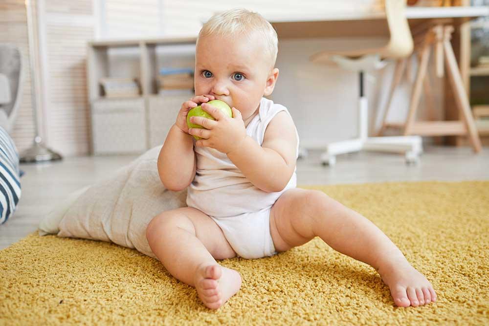 Baby Ab Wann Brötchen